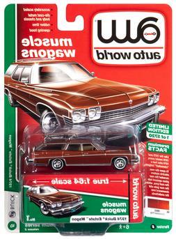 2019 AUTO WORLD 1:64 *PREMIUM 2B* Cinnamon 1974 Buick Estate