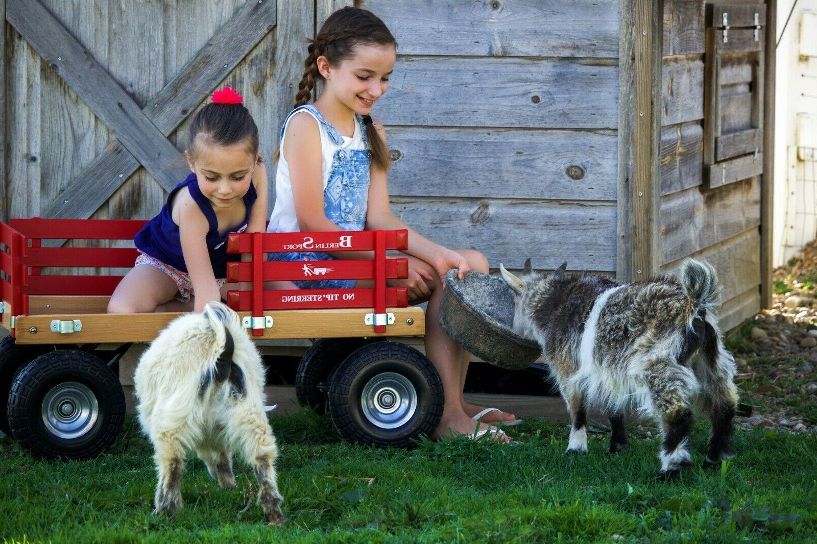 Amish-Made Sport Wagon, Wagon, Red