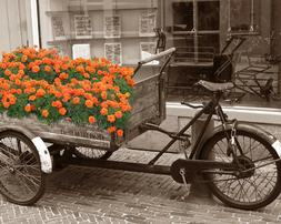Orange Gray Black Sepia Room Decor Wall Art Vintage Wagon Ph